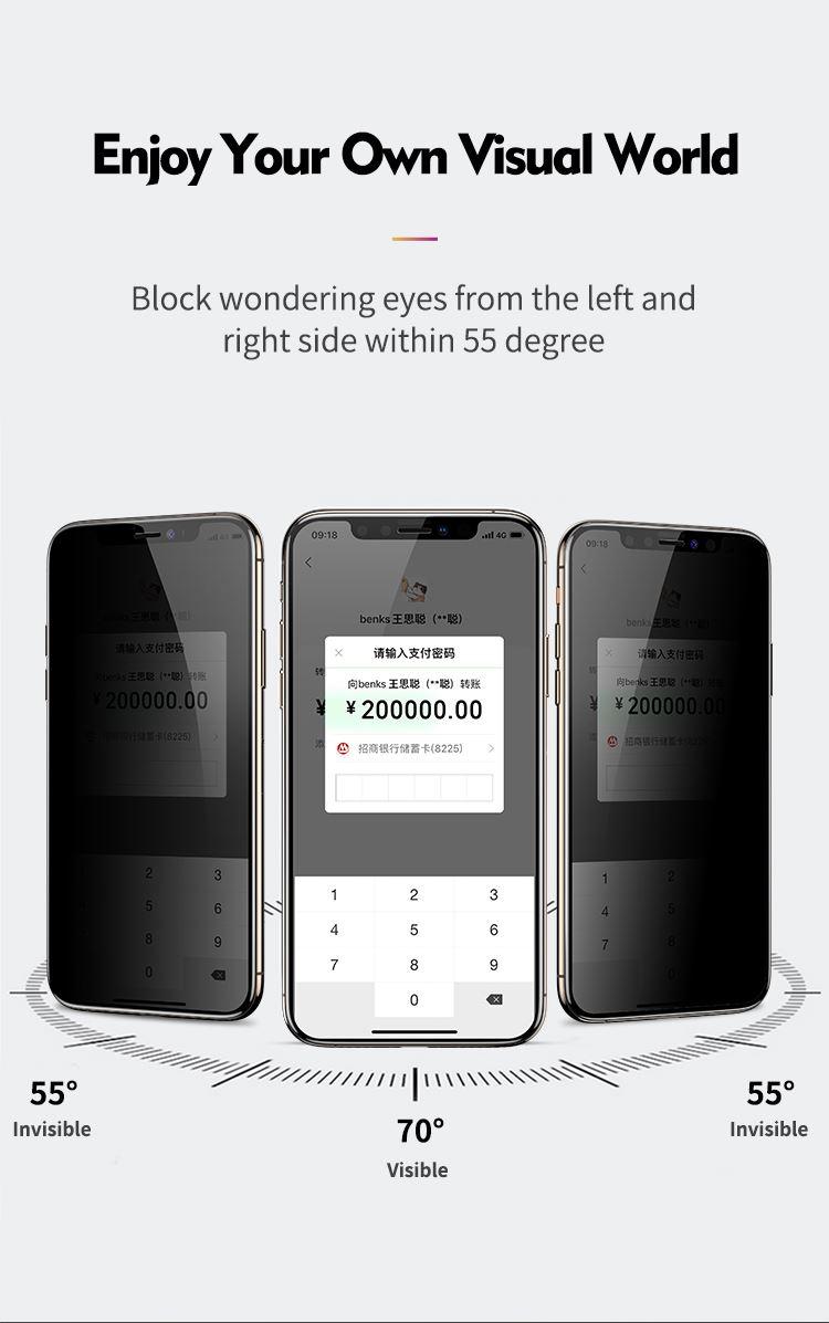 iPhone 11 Pro Max Anti-Dust Privacy EKRAN KORUYUCU ( Hayalet Cam )